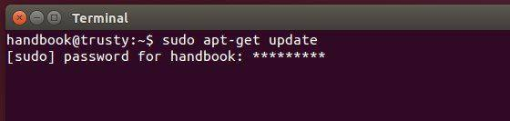 terminal-with-password-feedback
